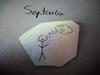 Assistante Septaria
