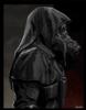 Sardonic Mercenary