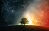 KnightKnight