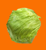 LettuceDeity