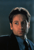 PhD_Mulder