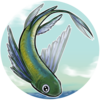 Peixe do Vento