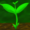 green_sprout