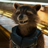 avatar.php?userid=5392606&size=small&timestamp=yousuke-racoon