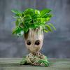 Mr-Groot