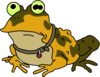 Frogking