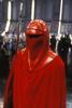 Ninja_Walruss