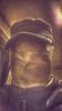 ginger3738
