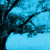 The Obsidian Shard