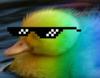 FluorescentDuck
