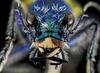 avatar.php?userid=4201224&size=small&timestamp=shu-yabiyabi