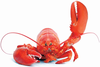 Dr Lobster Emperor