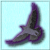 Avian Overlord