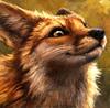 foxdyyy