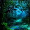 Forestmonk