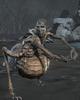 Locust Preacher