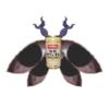 avatar.php?userid=5590475&size=small&timestamp=kijigaya-0726