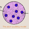 Plum_Pudding71