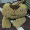 avatar.php?userid=4283425&size=small&timestamp=shu-yabiyabi