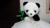 kahlua-panda