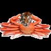 avatar.php?userid=5634252&size=small&timestamp=yanapppppu