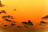 CODENAME_Red_Skies