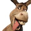 Mr Donkey