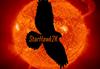 starhawk2k