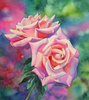 RoseFlood
