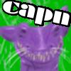 capnnerefir