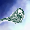 sparrow_itsng