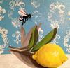 LemonBee12