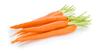 Dr Carrot