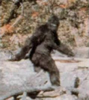 Texas_Bigfoot