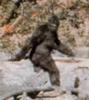 Texas_Bigfoot