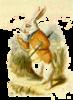 theonlywhiterabbit