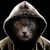 Digitalcat