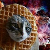 SuperWaffleKitty