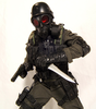 Agent_corvar