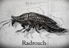 PsychicRadroach