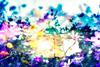 avatar.php?userid=3991118&size=small&timestamp=shu-yabiyabi