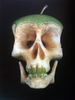 tunedtoadeadchannel