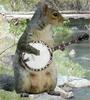 SketchyTheSquirrel