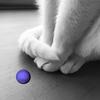 avatar.php?userid=7513554&size=small&timestamp=iduko