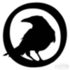Crow pablo
