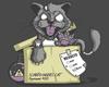 Schrodingers_Kitty