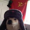 Agent Zubachyov