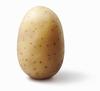 PotatoPerson