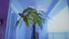 Treetop_64bit